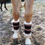 Foal Protective Boots