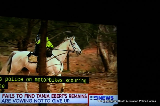 Soouth Australian Mounted Police