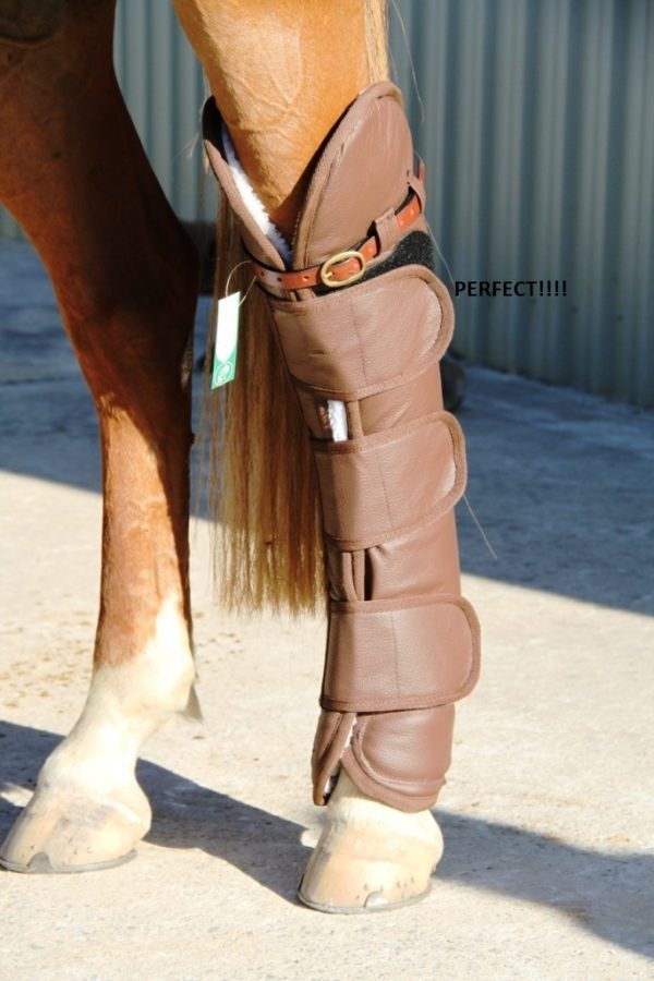 Horse Starting Boots