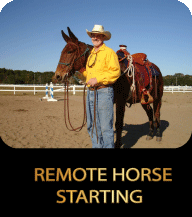 REMOTE-HORSE-STARTING