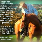 Listen to Your Horses
