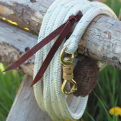 Horse Halters and Leads
