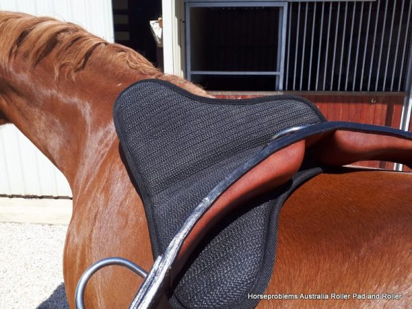 Re-Mouthing Horse Roller