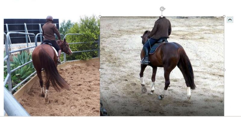 before-and-after-OLeary-colic-treatment-e1572323244261