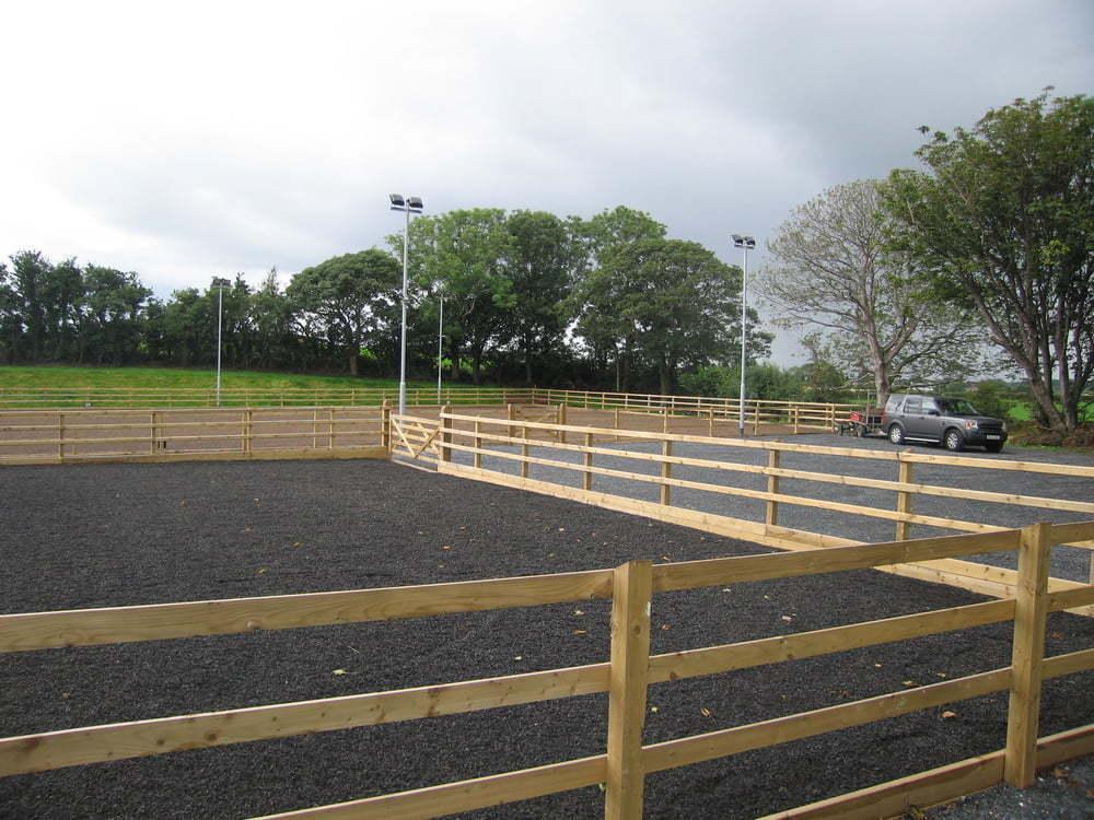Equestrian31